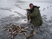 Рыбалка и отдых  на Чудском озере