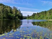 два прекрасных участка на браславских озерах 15 и 30 соток