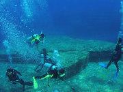 Обучение подводной охоте,  дайвинг