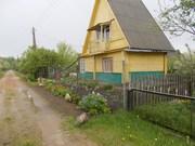 Продам дачу в Витебской области
