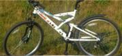 Продается прокат велосипедов в Витебске.