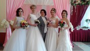 Ведущий на свадьбу в Витебске Полоцке тамада